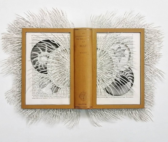 BARBARA WILDENBOER, THE STUDY OF MAN 2020, Altered Book