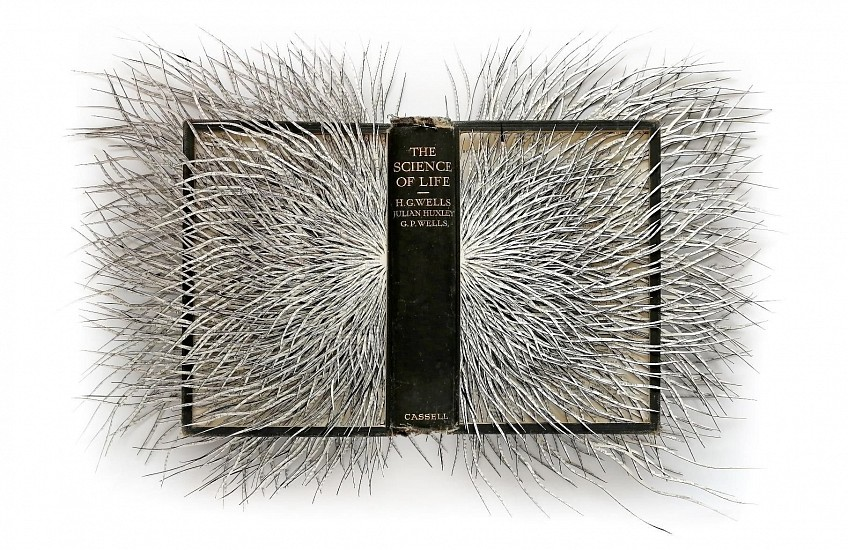 BARBARA WILDENBOER, THE SCIENCE OF LIFE 2020, Altered Book